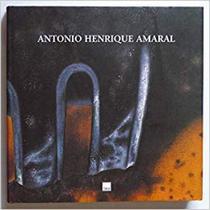 Antonio henrique amaral - obra em processo - Dba -