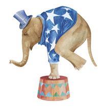 Aplique Decoupage Litoarte APM8-545 em Papel e MDF 8cm Elefante de Circo -
