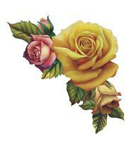 Aplique Decoupage Rosas Amarela e Rosa APM8-611 em Papel e MDF 8cm Litoarte -