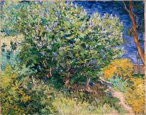 Arbusto Lilás - Vincent van Gogh - Tela 50x63 Para Quadro - Santhatela