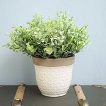 Arranjo de Folhagem Eucalipto no Vaso de Cerâmica Branco P  Formosinha -