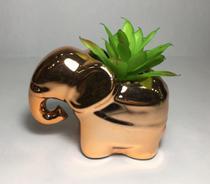 Arranjo De Suculenta Artificial Vaso de Elefante Porcelana - Sunflower