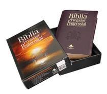 Bíblia do Pregador Pentecostal - Vinho - Sbb