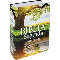 Bíblia Nova Almeida Atualizada Letra Grande - Com Índice Capa Reflexo - Presentes Evangélicos