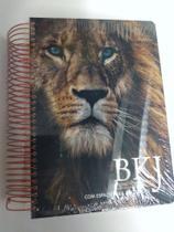 Bíblia sagrada Anote King James - Bvbooks -