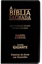 Biblia Sagrada Evangelica Nova Letra Gigante - Harpa e Corinhos - Pae