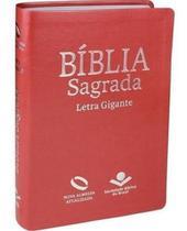 Bíblia sagrada nova almeida atualizada com índice - pêssego - Sbb
