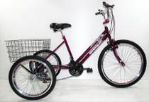 Bicicleta Triciclo Luxo Aro 26 Completo 21 Marchas Rebaixado - Casa Do Ciclista