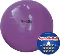 Bola p/ Exercícios Gynastic Ball 95cm c/ DVD de Exercícios - Carci