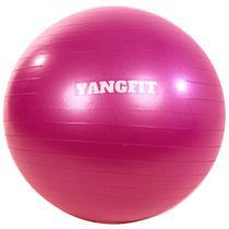 Bola Pilates Suíça Exercícios Yoga 55cm Com Bomba Yangfit -