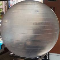 Bola Suíça para Pilates Transparente 65 CM - LIVEUP LS3221 T65 -