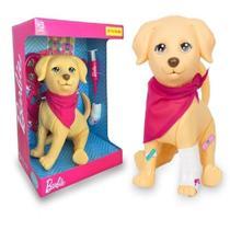 Boneco Pet Veterinario Da Barbie +3 Anos - Mattel Pupee -