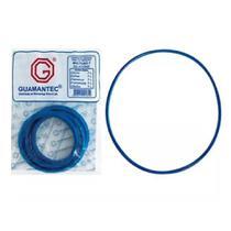 Borracha de panela de pressão em silicone azul 7 litros  20 unidades - Guamantec