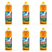 Brilhante Pinho Desinfetante 1 L (Kit C/06) -