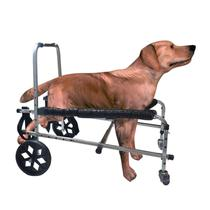 Cadeira Andador De 4 Rodas Cão Cachorro Medio Porte 8 A 15kg - Pet Best