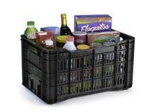 Caixa Organizadora Eco Box 45 Litros Arthi 5092 -