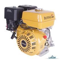 Carburador Completo para Motor Estacionário 8.0HP 0678 - Buffalo