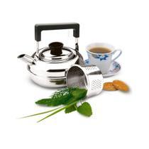 Chaleira Inox 1 Litro com Coador De Chá Zanella Cozinha -