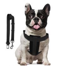Cinto de Segurança com Adaptador - Kit - Petdog