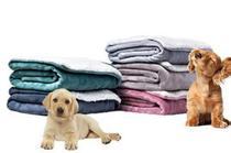 Cobertor Pet Manta Soft e Pele de Carneiro Dupla Face Coberdrom 1 Peça - Mais Lar