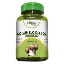 Cogumelo do Sol 60 Cápsulas 600mg Fitoplant -