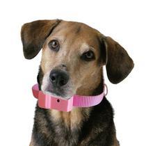 Coleira Anti-latido, Smart 2 Plus, Rosa, Bateria p/ 6 meses, Não maltrata o animal - Amicus