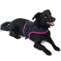 Coleira peitoral guia peitoral pet para cães e gatos - Dogmarley