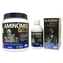 Combo Aminomix Gold 500g + Glicopan Gold 250Ml Vetnil -