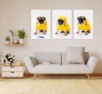 Conjunto 3 Quadros Decorativo MDF Cachorro Pet Pug Capa de Chuva Amarela - Adoro Decor