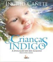 Criancas Indigo - A Evolucao Do Ser Humano - 03 Ed - Besourobox