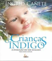 Criancas Indigo - A Evolucao Do Ser Humano - 03 Ed - Besourobox