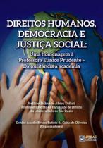 Direitos humanos, democracia e justiça social - Letras juridicas -