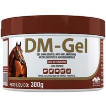 DM-Gel 300g - Vetnil -