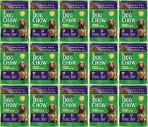 DOG CHOW SACHE AD RP CORDEIRO 100g CAIXA COM 15 UNIDADES -