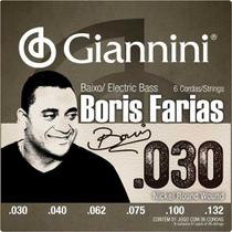 Encordoamento Para Contrabaixo 6 Cordas Signature Boris Farias SSBNBF6 Giannini -