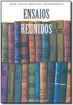 Ensaios Reunidos/04 - Singular