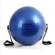 (F)Bola 65cm Com Alça E Extensor Bioshape -