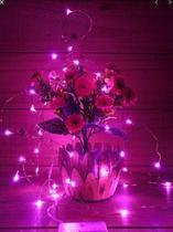 Fio Fada Prata Cobre Cordão Luz Rosa   3m 30 Leds Pilha - Importação