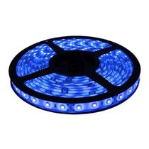 Fita LED 5050 Azul Rolo 5m com fonte 12V 2A - Kit led