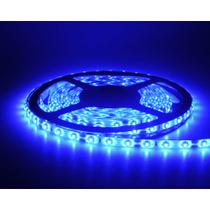 Fita Led Azul 3528 12v Rolo 5 Metros Ip65 com Fonte 3A - Power xl