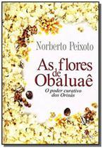 Flores de obaluaê (as) - Besourobox -