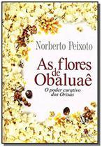 Flores de obaluaê (as) - Besourobox