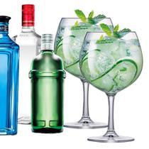 Jogo de Taças Gin Club Cristal 660ml 2 Pcs - Ruvolo