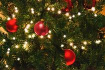 Kit 12 Bolas de Natal Enfeite Árvore Vermelhas Pequenas Lindas - Delverano