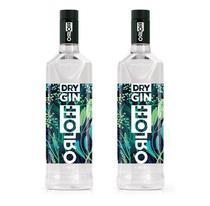Kit 2 Gin Orloff 1 L -