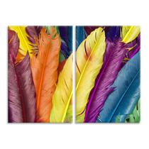 Kit 2 Telas Decorativas Penas Coloridas - Prego E Martelo