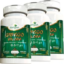 Kit 3 Ginkgo Biloba Katigua 60 Cápsulas -