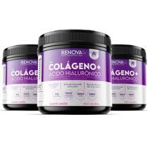 Kit 3 Potes Colágeno + Ácido Hialurônico - Renova Se