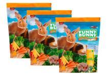 Kit 3 Ração Funny Bunny Delicias Da Horta - 500g -