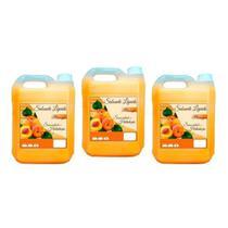 Kit 3 Sabonetes Líquidos Pêssego De 5 Litros Cada - Equimica